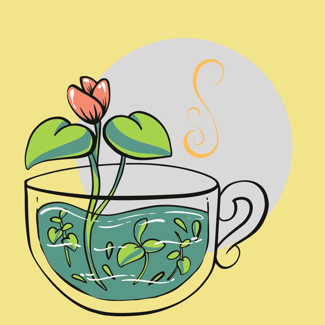 Tea tasting with Vanessa Neville